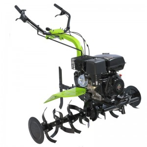 poza Motosapa Green Field GP-90125A 9 cp