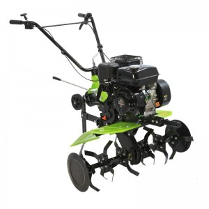 poza Motosapa Green Field GP-7085A 7 cp
